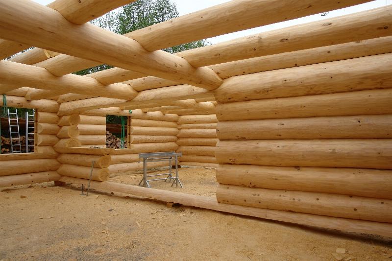 Kantholz Oder Rundholz Als Blockbalken Oder Naturstamm Blockhaus