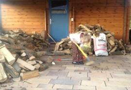 Brennholz kaufen und stapeln