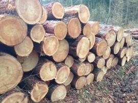 Holzschraube Holzstapel