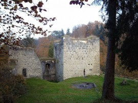 Burgruine im Harz