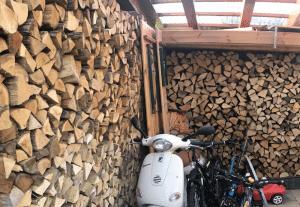 Brennholzstapel im Schuppen