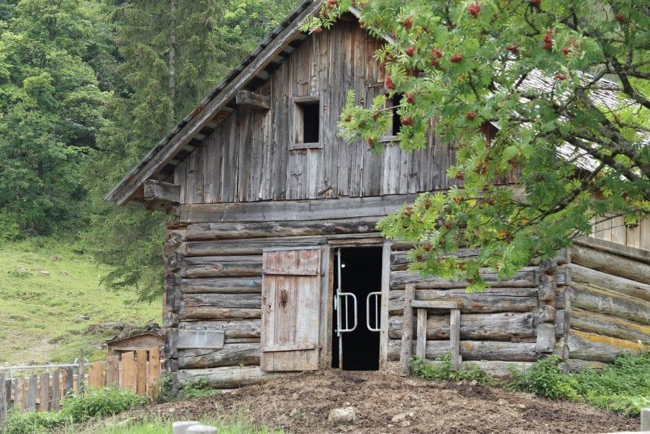 Holzhaus ohne Leim