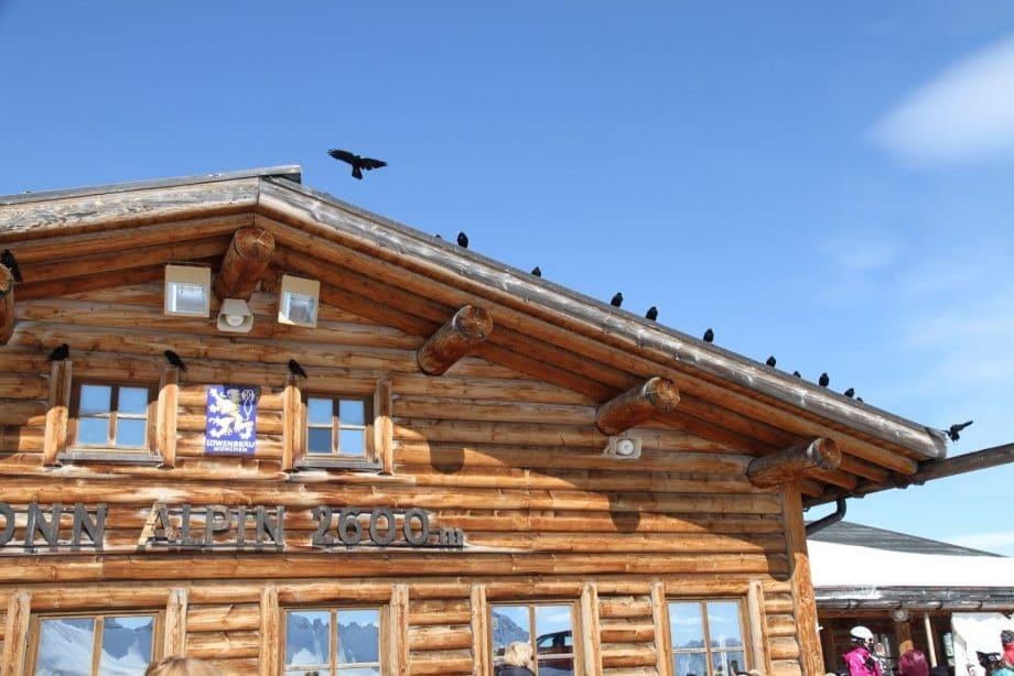 Holzhaus ohne Lüftungsanlage